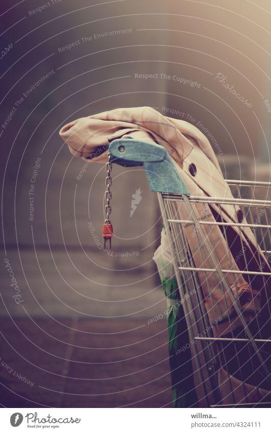 ich werde einen einkauf wagen. shoppen Einkaufswagen Shopping einkaufen