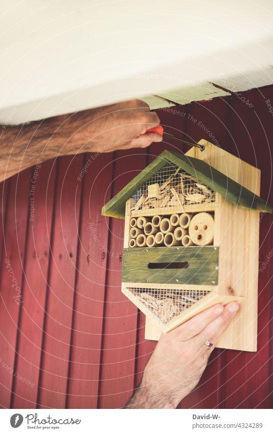 Mann bringt ein Insektenhotel an einer Wand an Insektenschutz Nachhaltigkeit umweltfreundlich insektensterben bienenfreundlich Garten Gewissen naturfreund