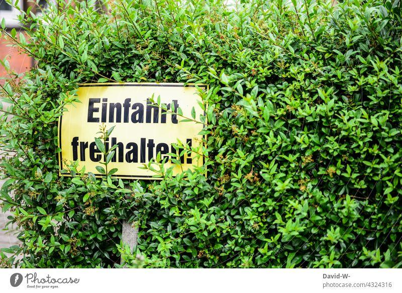 Einfahrt freihalten - ein durch Pflanzen verdecktes Schild einfahrt freihalten Verkehrsschild Achtung Hinweisschild Naturwuchs Hecke Warnschild Ausfahrt
