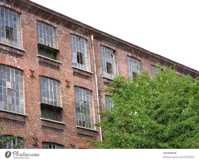Baumwollspinnerei Leipzig Himmel grün rot Haus Fenster Architektur Perspektive Industriefotografie Backstein