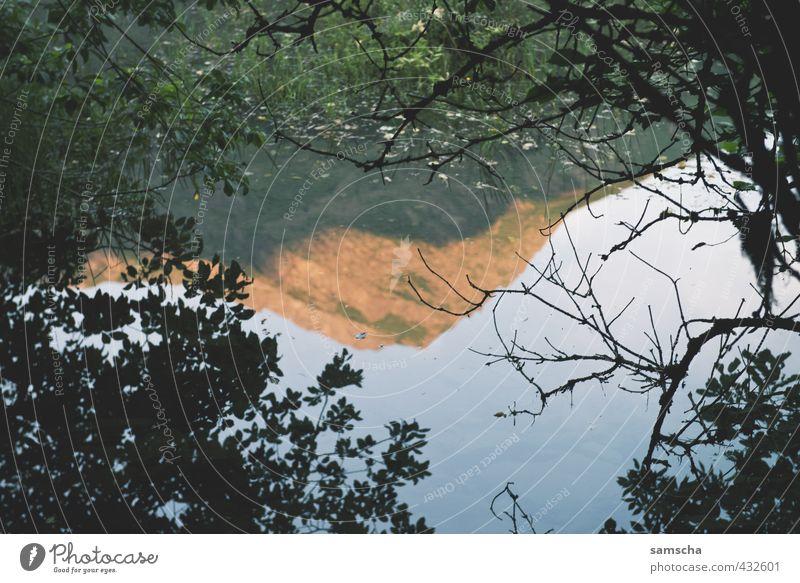 spieglein spieglein... Natur Ferien & Urlaub & Reisen Wasser Baum Landschaft Umwelt Berge u. Gebirge See Felsen wandern nass Gipfel Alpen Abenddämmerung Teich