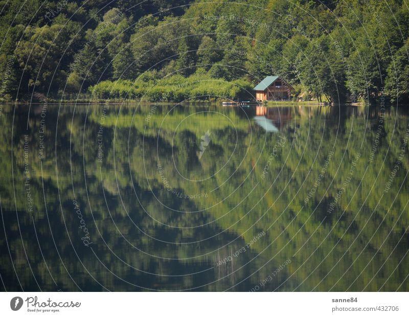 Spiegelung II Natur grün Wasser Sommer Baum Erholung ruhig Haus Wald Ferne See Idylle Zufriedenheit Häusliches Leben ästhetisch einfach