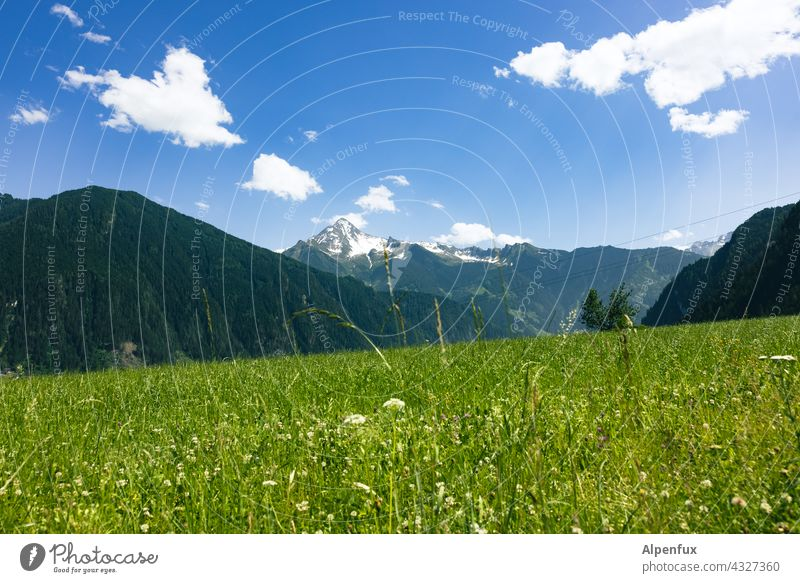 Zillertal Berge u. Gebirge Zillertaler Alpen Ferien & Urlaub & Reisen Panorama (Aussicht) Landschaft Himmel Natur Gipfel wandern Farbfoto Ausflug Tag