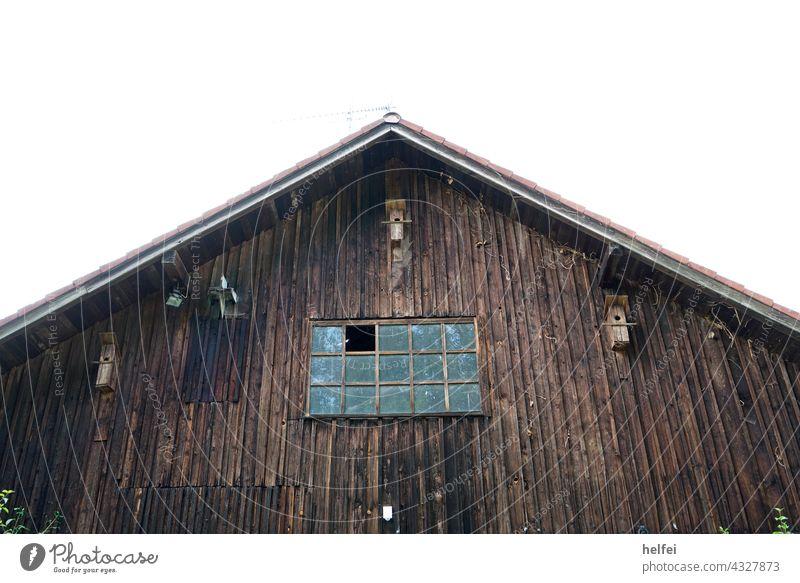 Scheune mit  Holzverschalung und Vogel Häuschen an der Fassade mit eingeschlagenen Fenster zum Einflug von anderen Vögeln oder Fledermäusen Häuschne Bretter