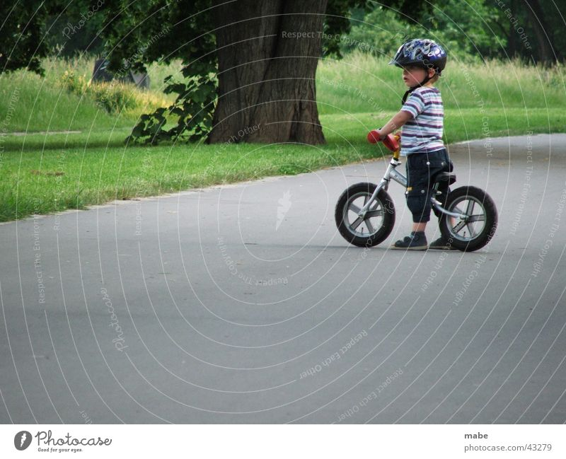 kind auf fahrrad und guckt Kind Fahrrad Straße Blick Junge Laufrad stehen gestreift niedlich klein Kleinkind Außenaufnahme Farbfoto Baumstamm 1 Rasen