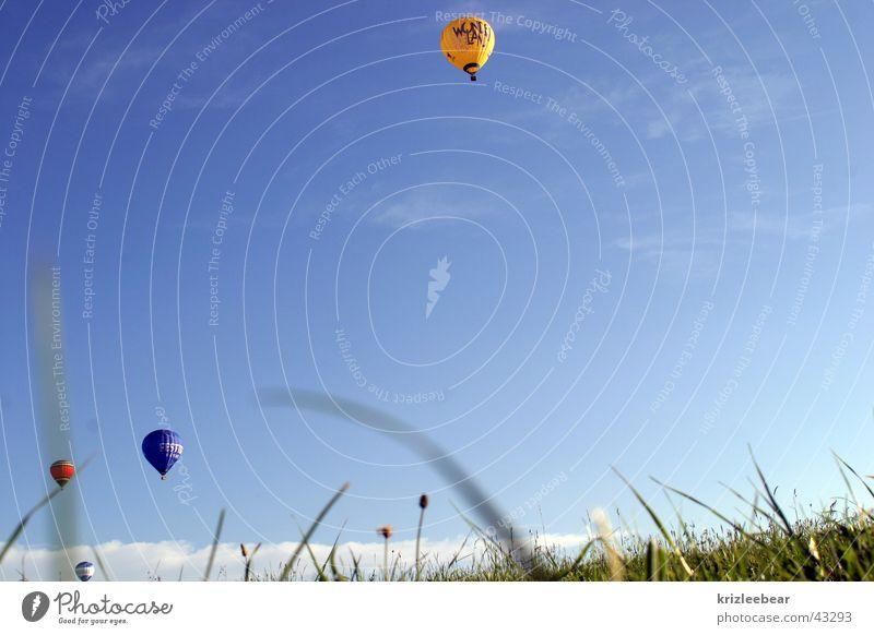 kleine ballons vor großem gras Freude Freizeit & Hobby Jahrmarkt Luftverkehr Gras Wiese Ballone fahren Halm baloon grass Himmel Farbfoto Außenaufnahme
