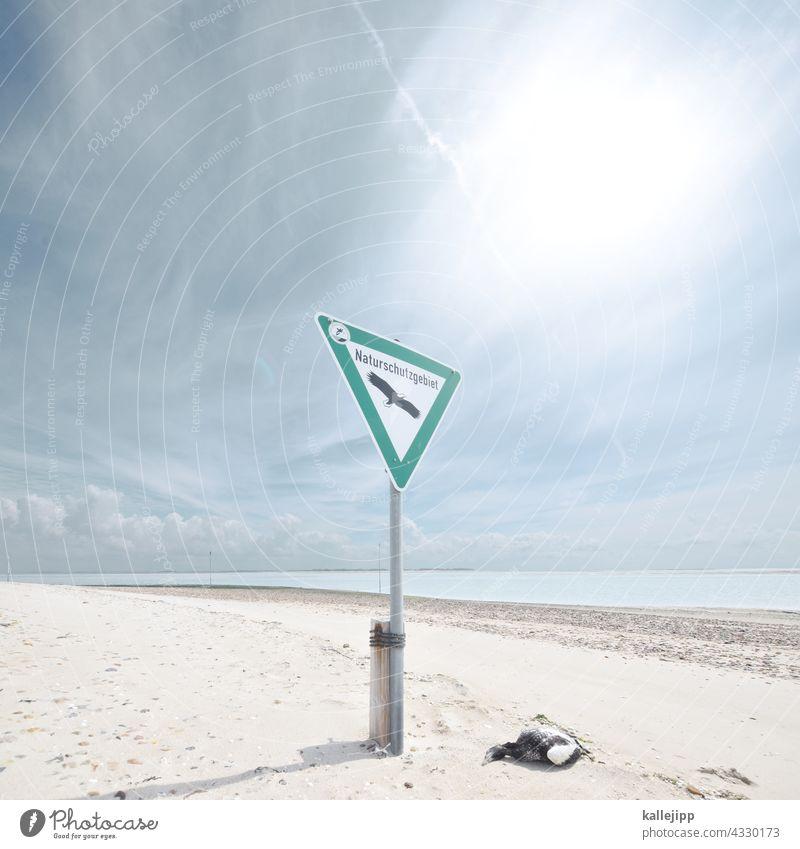 rückzugsgebiet Naturschutzgebiet Schilder & Markierungen naturschutzbund Umwelt Außenaufnahme Farbfoto Menschenleer Tag Pflanze grün Baum Tier Tod Vogel Strand