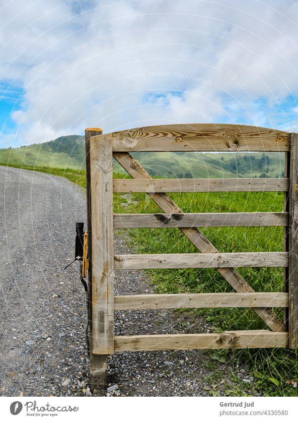 Tiergatter auf der Alm bei bewölktem Himmel Grossarl Landschaft Natur Sommer Tür Türen und Fenster Wandern Außenaufnahme Farbfoto Tourismus