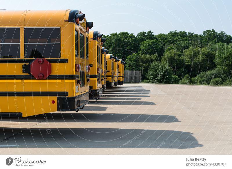 Reihe gelber Schulbusse auf einem Parkplatz; lange Schatten auf dem Bürgersteig und üppige grüne Bäume im Hintergrund zurück zur Schule Bus Warten im Freien