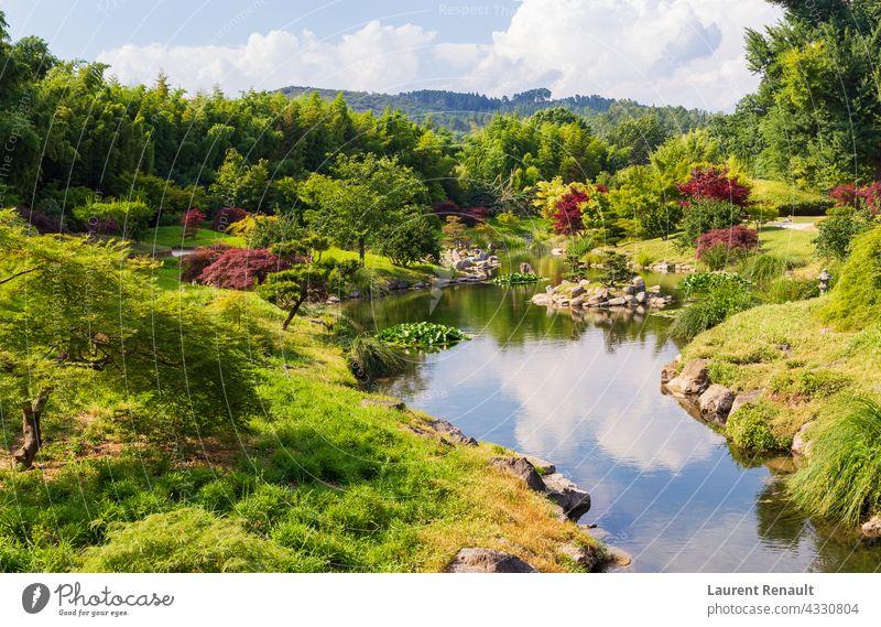 Japanischer Garten und Natur botanisch eden Wald grün idyllisch Landschaft ornamental Park Teich ländlich malerisch Frühling
