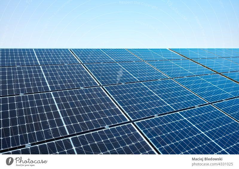 Bild von Solarmodulen an einem sonnigen Tag, selektiver Fokus. Sonnenkollektor Panel solar Öko Natur Technik & Technologie Hintergrund blau Energie Photovoltaik