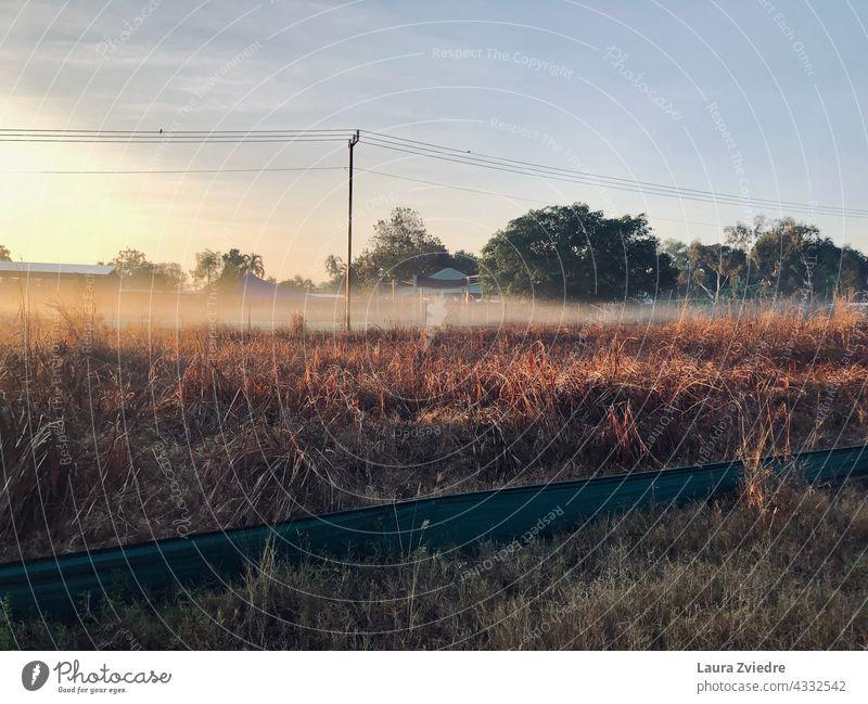 Morgennebel auf dem Feld Nebel Powerline Stromleitung Natur Landschaft Sonnenaufgang Sonnenaufgangslandschaft Sonnenaufgang Himmel Sonnenlicht Saison im Freien
