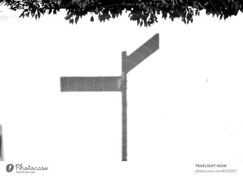 Der Schatten eines Schildes mit zwei Straßennamen zeigt sich dank starkem Sonnenlicht auf einer knallweissen Mauer über deren Rand sich eine Hecke reckt