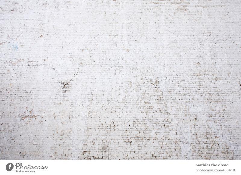 WAND Mauer Wand Fassade trist minimalistisch feuerschutzwand Backstein weiß gestrichen ruhig steril bewegungslos Farbfoto Gedeckte Farben Außenaufnahme