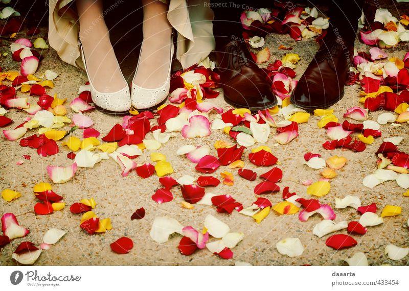 kurz danach Entertainment Party Veranstaltung Feste & Feiern Hochzeit maskulin feminin Paar Partner Fuß 2 Mensch Rosenblätter Park Schuhe Damenschuhe