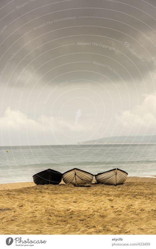 Nußschalen Himmel Ferien & Urlaub & Reisen Wasser Sommer Meer Erholung Wolken Strand Ferne Küste Freiheit Schwimmen & Baden Sand Horizont braun Wetter