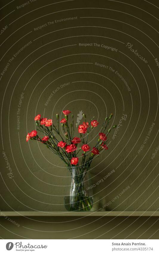 roter Blumenstrauß vor grüner Wand Wandfarben Vase Stillleben wohnen Design Kontrast natürlich dunkel dunkelgrün dunkler Hintergrund
