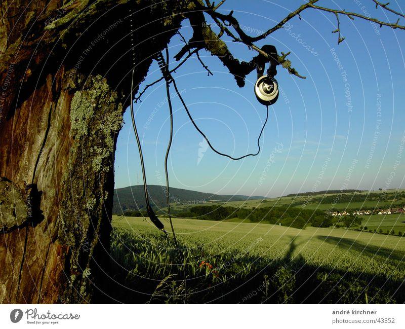 klangholz Baum Sommer Feld Kabel Kopfhörer Ton