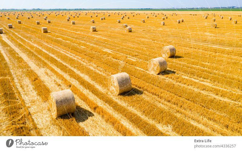 Luftaufnahme eines Feldes mit ausgekleideten Strohballen auf einem Acker oben quer Antenne landwirtschaftlich Ackerbau Ballen Müsli Land Ernte kultiviert