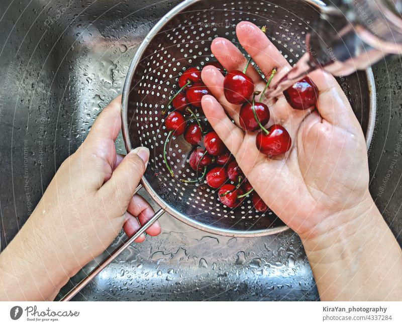 Reife frische Kirschen Beere in Stahlsieb wird von Hand unter Leitungswasser im Waschbecken gewaschen Beeren Frucht Waschen Sommer Essen zubereiten Draufsicht