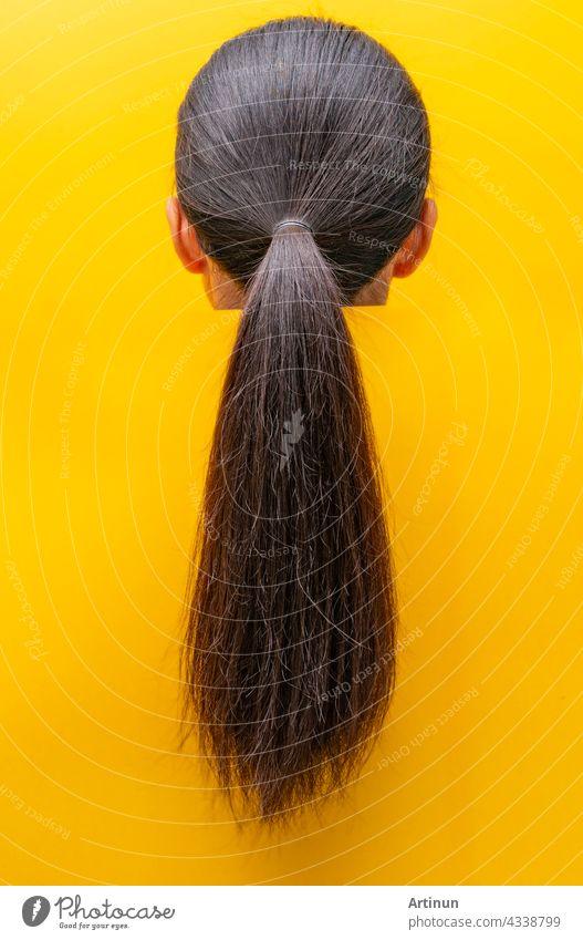 Rückansicht Pferdeschwanz beschädigte Haare isoliert auf gelbem Hintergrund. Trockenes und sprödes Haar Problem. Schwarzes langes Haar mit einer trockenen Textur. Asiatische Frau mit schwach, spröde und ungesunde Haare brauchen Spa.