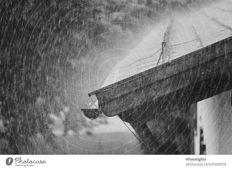 Regen prasselt auf Hausdach Sturm prasseln regnen Dach Dachziegel Ziegel schwarzweiß Außenaufnahme Gebäude Architektur Menschenleer Tag stürmisch Wetter