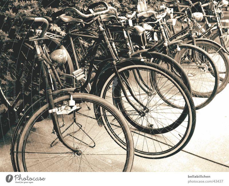 Old bikes Fahrrad Verkehr Mobilität Nostalgie