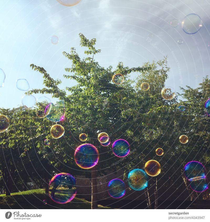 [PARKTOUR HH 2021] Die Welt in einer Kugel. Seifenblase Spass Baum Park Sommer pusten Farbfoto bunt seifig Kindheit Spielen Freude Außenaufnahme Tag