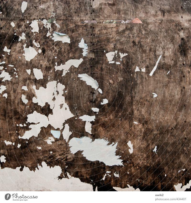 Werbeblocker Papier Holz alt groß trashig Unlust Verfall Vergänglichkeit verlieren Irritation Wandel & Veränderung Zerstörung Werbeschild Rest Fetzen Spuren