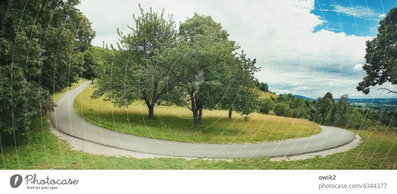Südkurve Landschaft draußen Natur Straße Kurve Serpentine elegant Asphalt Straßenrand schmal eng Höhenunterschied Bäume Wiese Horizont Weite Weitblick Wald