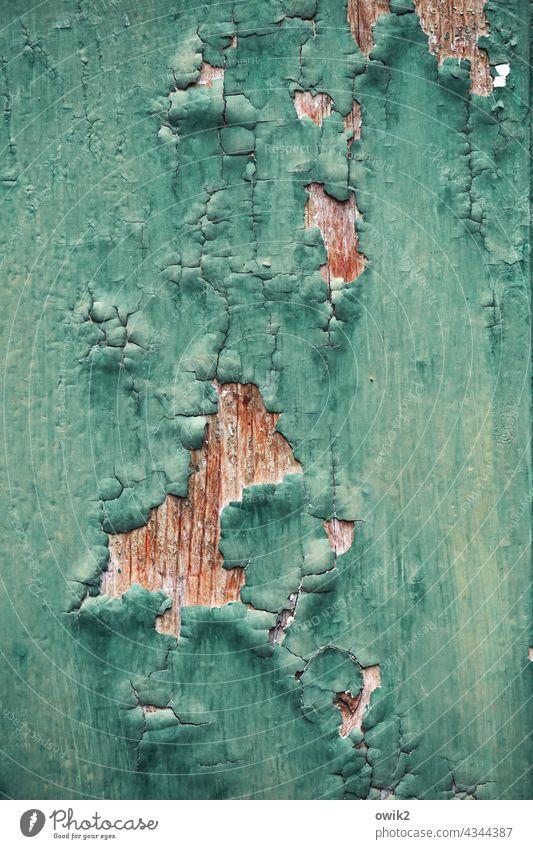 Wandpocken türkis blau Zahn der Zeit Riss Spuren Zerstörung Muster abstrakt abblättern Außenaufnahme Detailaufnahme Strukturen & Formen Menschenleer Nahaufnahme