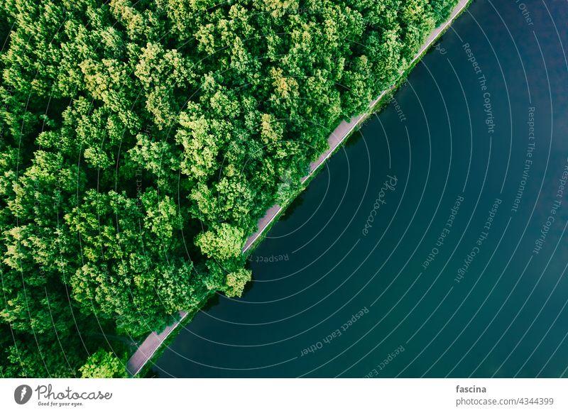 Grüner Wald und Wasser Luftaufnahme von oben, Kopierraum Oberfläche Antenne Textur diagonal Textfreiraum copyspace Raum See türkis Park Bäume grün laubabwerfend