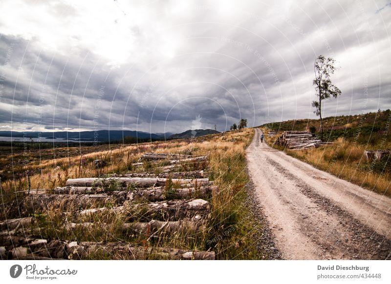 Der Weg ist das Ziel Natur Ferien & Urlaub & Reisen blau grün weiß Pflanze Sommer Landschaft Wolken schwarz Ferne gelb Herbst Gras Wege & Pfade braun