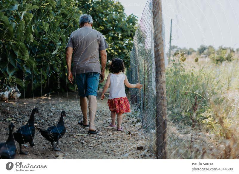 Kind und Großvater gehen mit Enten spazieren Rückansicht Großeltern Kaukasier Familie & Verwandtschaft Bauernhof authentisch Mann Erwachsene Enkel Zusammensein