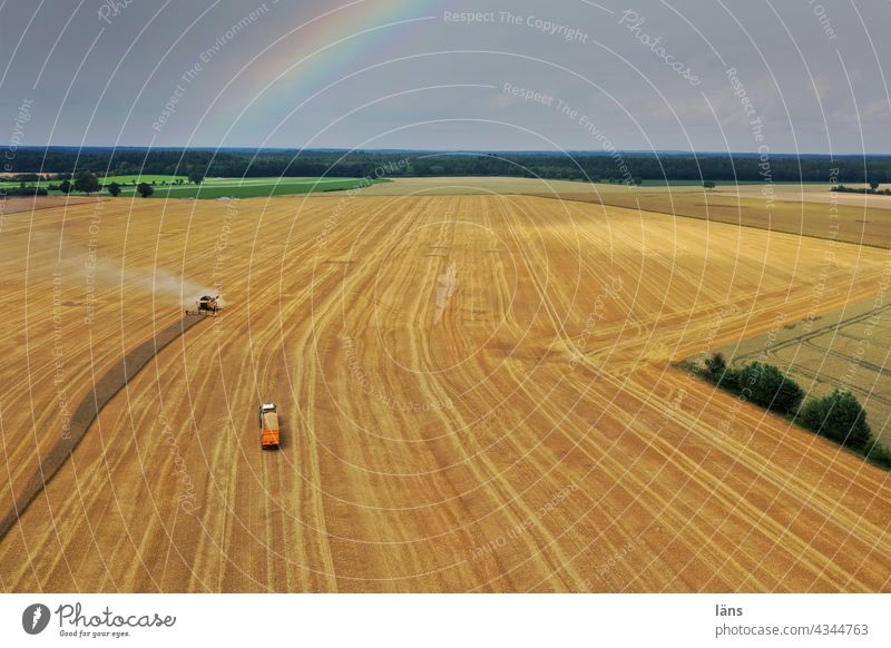 Ernteeinsatz auf Getreidefeld Vogelperspektive Feld Außenaufnahme Ackerbau Sommer UAV-Ansicht Unterteilung Regenbogen Mähdrescher Landwirtschaft Drohnenansicht