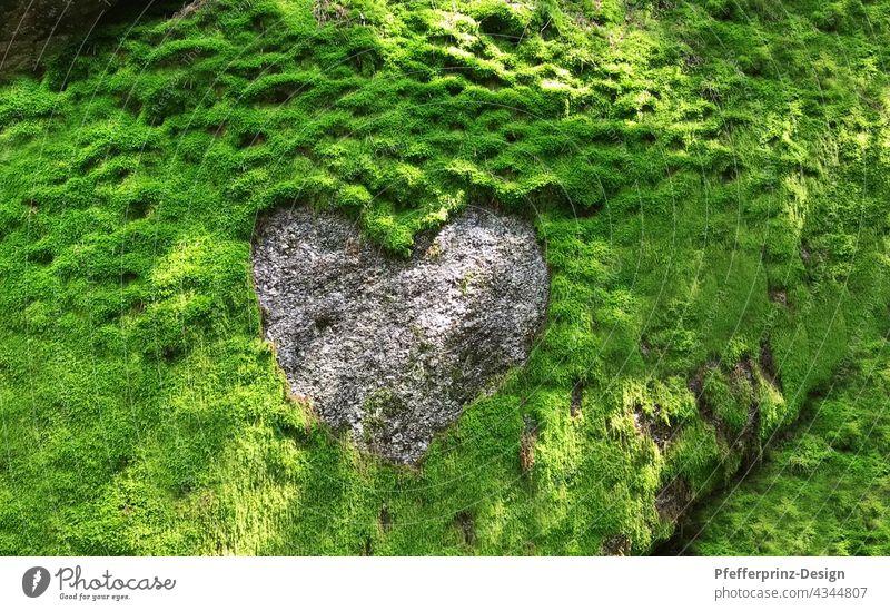 Moosfelsen mit einem Herzstruktur aus Granit Granitherz herzförmig herz aus stein grün