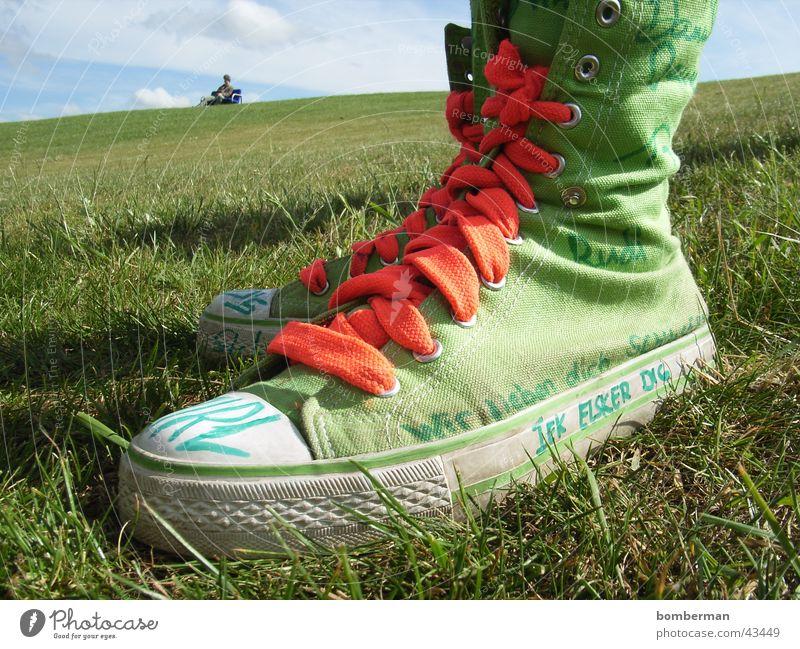 chucks und opa peter Chucks Wiese Makroaufnahme Nahaufnahme Rasen Turnschuh Außenaufnahme Freizeitschuh Schuhbänder