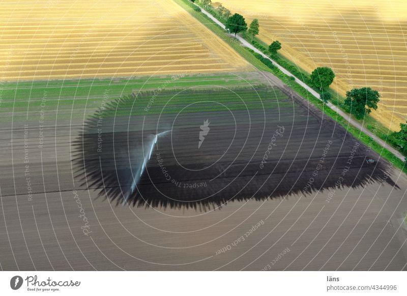 Bewässerung - grüner Daumen kunstregen Wasser Landschaft Landwirtschaft acker Felder feldweg Weg Trockenheit luftaufnahme Drohnenaufnahme blick nach unten