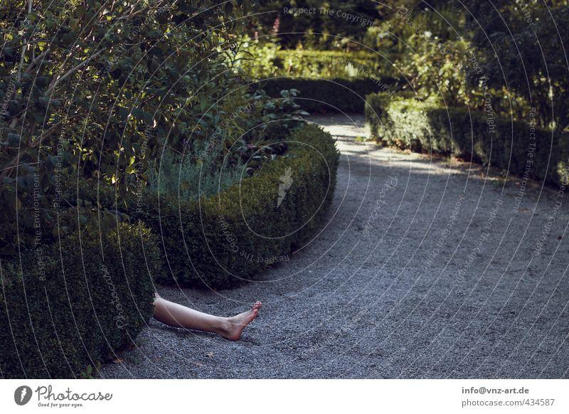 Rest Mensch feminin Beine 1 18-30 Jahre Jugendliche Erwachsene Umwelt Natur Sommer Pflanze Sträucher Garten Park Liebe schlafen Sex Erotik nackt schön Begierde