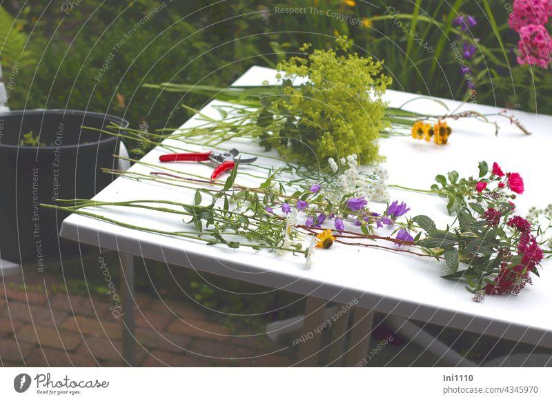 Blumenstrauß aus dem Garten Stauden Vorbereitung einzelne Blumen auf dem Tisch liegend Stiele entblättern Frauenmantel Sonnenbraut Schafgabe Montbretien Phlox