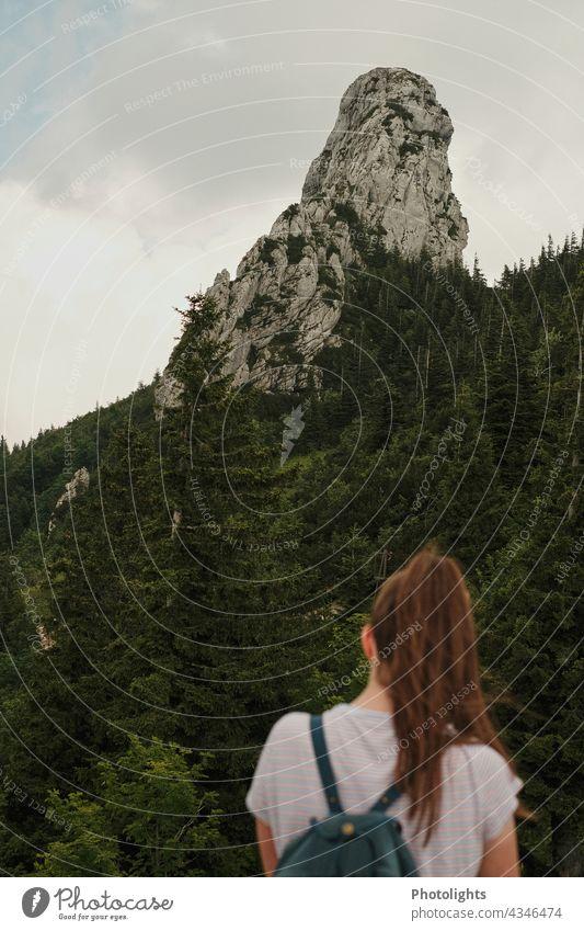 Junge Frau schaut zu einem Fels Alpen Pferdeschwanz Rucksack Wald Bäume grün grau braun Wolken Chiemgau Berg Natur Landschaft wandern Tourismus Berge u. Gebirge