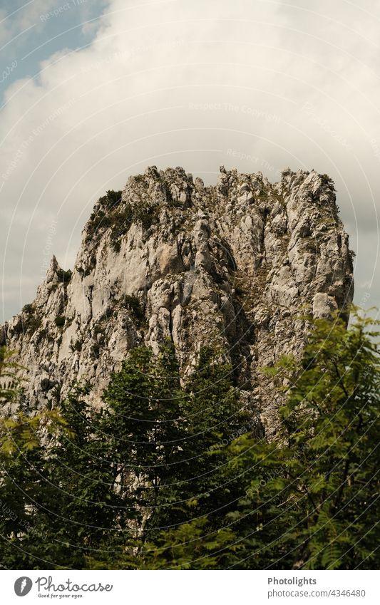 Fels im Gebiet der Kampenwand im Chiemgau Berg Gipfel Wald Bäume Tal Blick Landschaft Berge u. Gebirge Himmel Natur Alpen Felsen Außenaufnahme Farbfoto Tag
