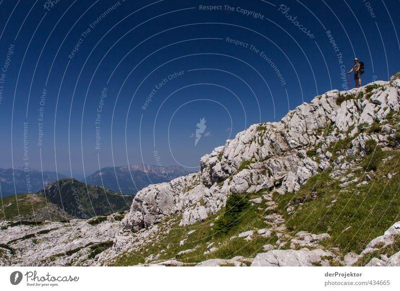 *200* der erste Hügel ist geschafft! Mensch maskulin 1 30-45 Jahre Erwachsene Umwelt Natur Landschaft Pflanze Wolkenloser Himmel Sonne Sommer Klima