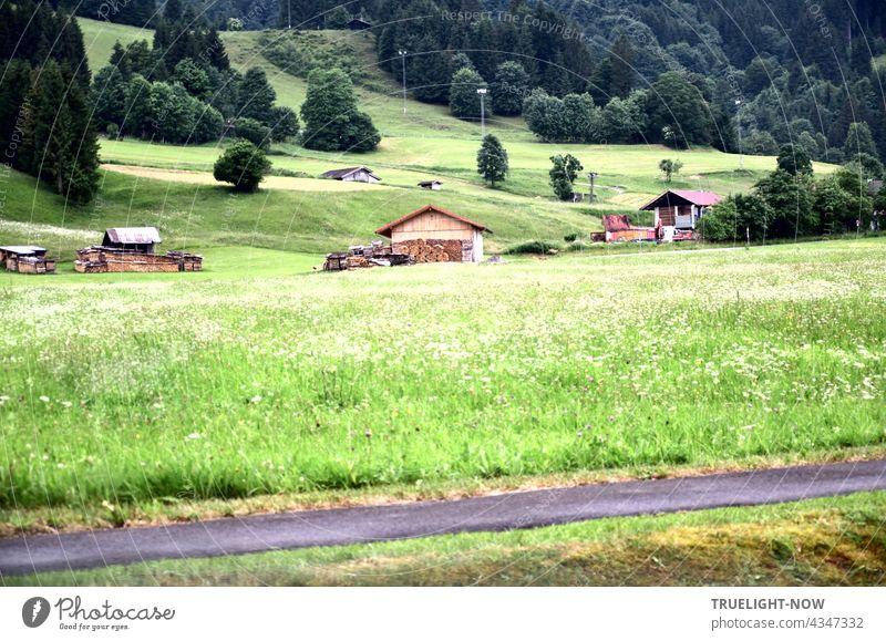 Ein paar Holzhütten und viele Büsche und Bäume stehen herum auf einer hügeligen grünen Wiesenlandschaft im Naturpark Ammergauer Alpen in Oberbayern und ein Stück Fahrradweg ist auch zu sehen