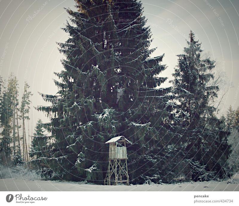 spielzeugland Umwelt Natur Landschaft Winter Baum Wald Zeichen Einsamkeit Idylle Nostalgie Hochsitz Tanne hoch Spielzeug Schneefall Jäger Wildtier Jagd Farbfoto