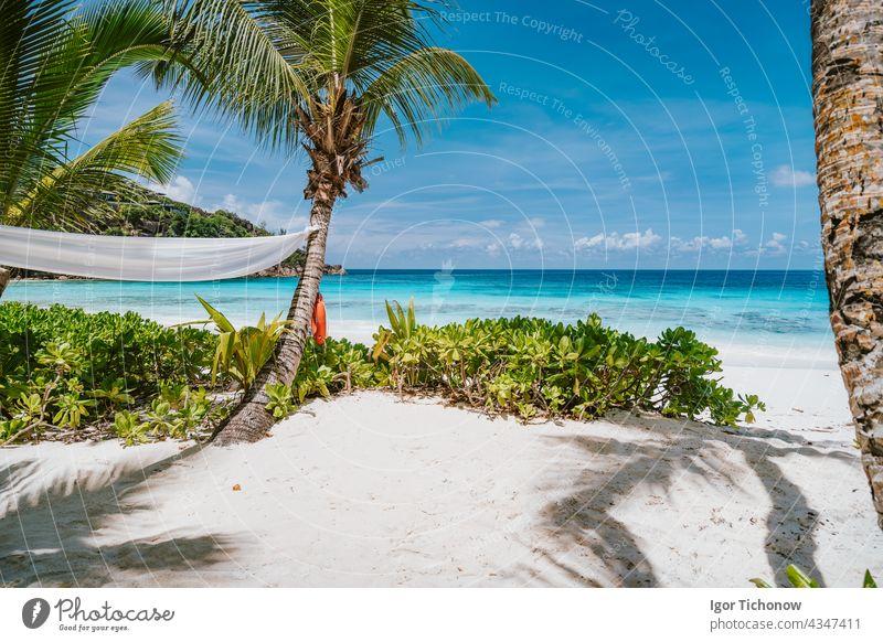 Tropischer Strand auf der Insel Mahe, Seychellen. Reisen Urlaub Hintergrund Mahé Paradies Wasser Natur Meer Landschaft tropisch Sommer Handfläche Himmel Sand