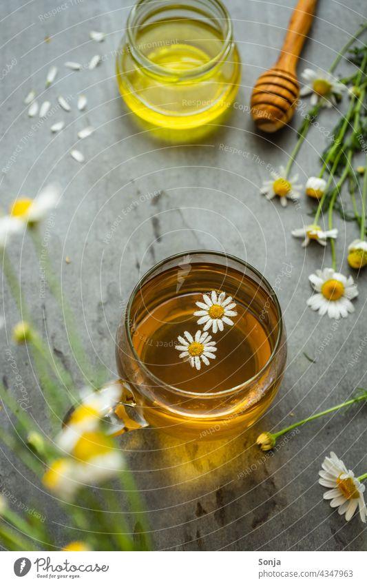 Kamillentee in einem Teeglas auf einem rustikalen Tisch kamillentee Kamillenblüten Pflanze Blüte Kräutertee Honig Heilpflanzen Alternativmedizin Gesundheit