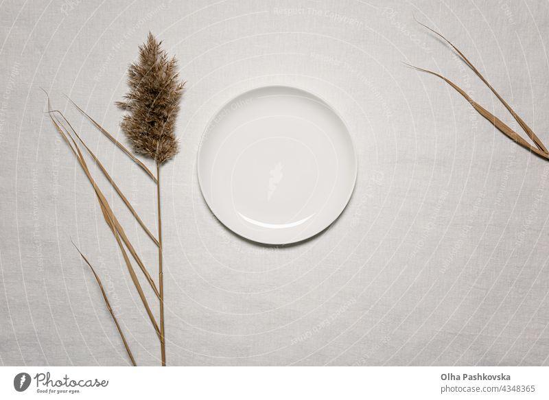 Horizontaler Hintergrund mit Schilfblume und Teller natürlich Dekoration & Verzierung taktil geblümt Stil Postkarte Textur Ast weiß braun Flora organisch beige