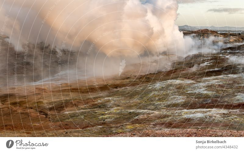 Dampfwolken über dem Boden - Seltún-Geothermalgebiet auf Reykjanes, Island Vulkan Hitze heiß Qualm vulkanisch Schwefel Wasser brodelnd stinkend Hölle Landschaft