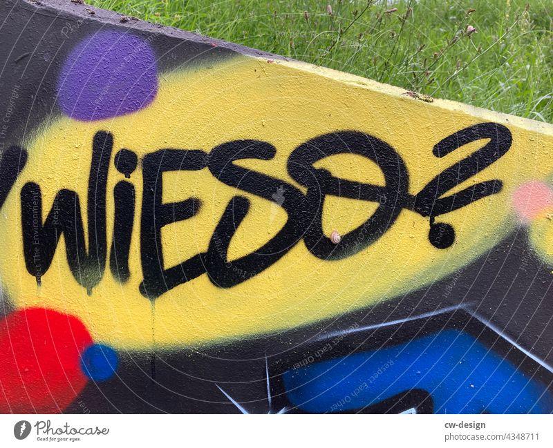 Wieso - gezeichnet & gemalt Farbfoto Graffiti Wand Zeichen Außenaufnahme Jugendkultur links Gesellschaft (Soziologie) Menschenleer Buchstaben Subkultur